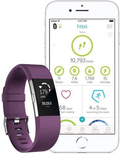 Tracker Fitbit Charge 2 FB407SPML Plum Silver L